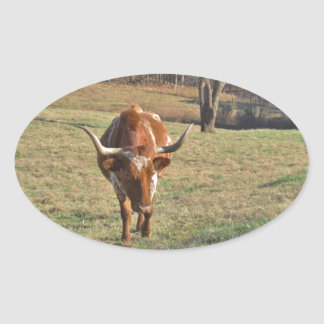 Brown and White Longhorn Bull Blue Sky Sticker