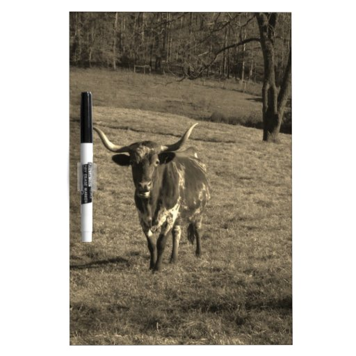 Brown and White Longhorn Bull Sepia Tone Dry Erase White Board