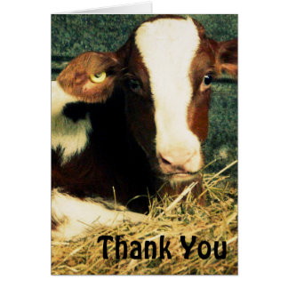 Brown and White Milk Cow Card