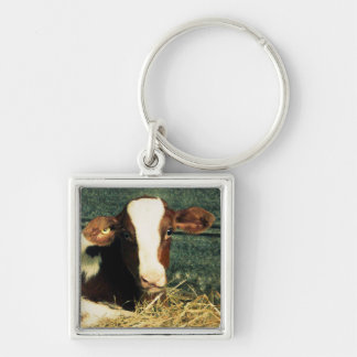 Brown and White Milk Cow Keychain