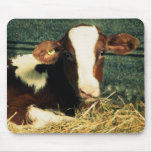 Brown and White Milk Cow Mousepad