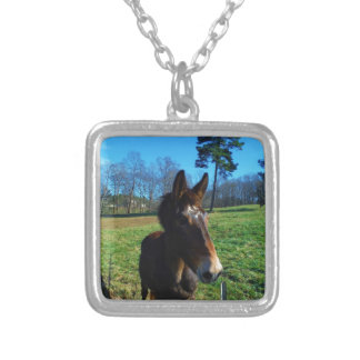 Brown and white mule personalized necklace