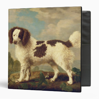 Brown and White Norfolk or Water Spaniel, 1778 (oi Binders