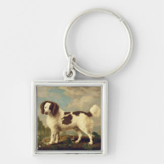 Brown and White Norfolk or Water Spaniel, 1778 (oi Keychain