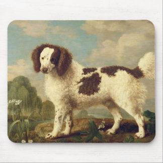 Brown and White Norfolk or Water Spaniel, 1778 (oi Mouse Pad
