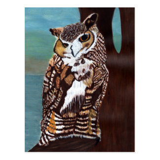 Brown and White Owl Postcard