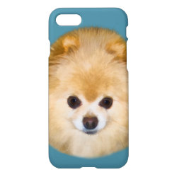 Brown and White Pomeranian Dog iPhone 8/7 Case
