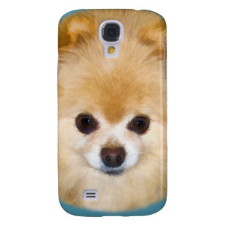 Brown and White Pomeranian Dog Samsung Galaxy S4 Cover