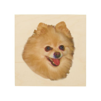 Brown and White Pomeranian Dog Wood Print