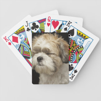 Brown and white Shih Tzu with eyes closed Bicycle Playing Cards