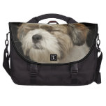 Brown and white Shih Tzu with eyes closed Commuter Bags
