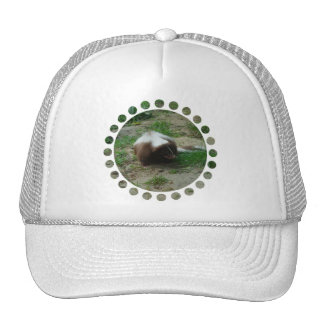 Brown and White Skunk Baseball Hat