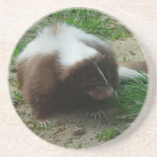 Brown and White Skunk Coasters