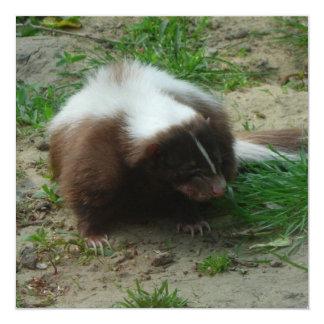 Brown and White Skunk Invitation