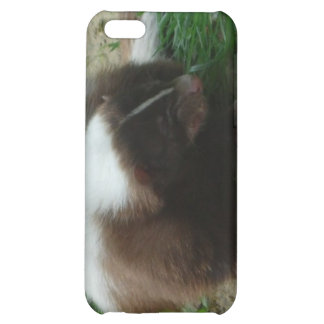 Brown and White Skunk iPhone 4 Case