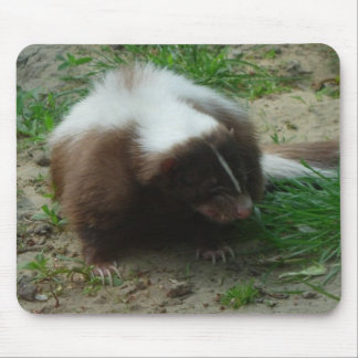 Brown and White Skunk Mouse Pad
