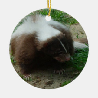 Brown and White Skunk Ornaments