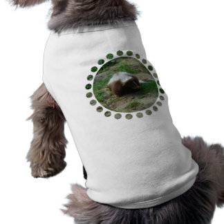Brown and White Skunk Pet Shirt