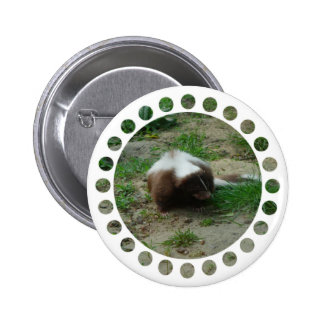 Brown and White Skunk Round Buton Pin