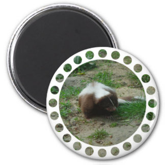 Brown and White Skunk Round Magnet Fridge Magnet