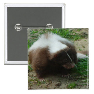 Brown and White Skunk Square Pin