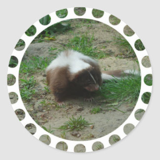 Brown and White Skunk Stickers