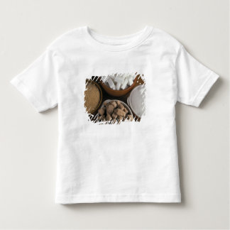 Brown and white sugars in cubes and powder toddler t-shirt