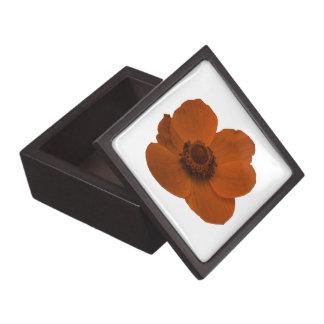 Brown Anemone Premium Gift Box