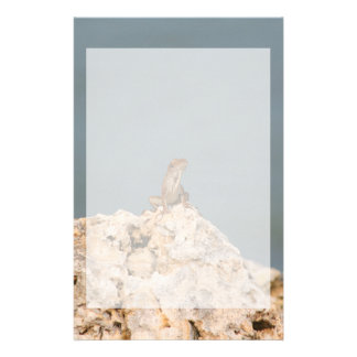 brown anole on holey rock with flower lizard stationery