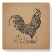 Brown Antique Rooster Illustration Chicken Art Stone Coaster