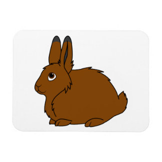 Brown Arctic Hare Rectangular Photo Magnet