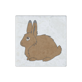 Brown Arctic Hare Stone Magnet