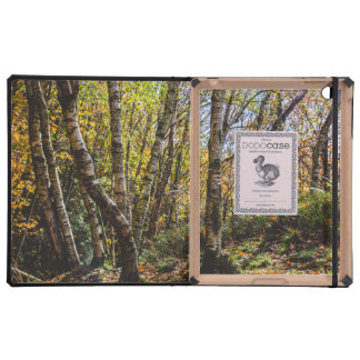 Brown Autumn Forest Landscape, Birch Trees Covers For iPad