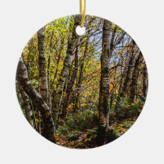 Brown Autumn Forest Landscape, Birch Trees Ceramic Ornament