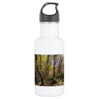 Brown Autumn Forest Landscape, Birch Trees Stainless Steel Water Bottle