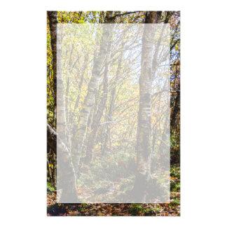 Brown Autumn Forest Landscape, Birch Trees Custom Stationery