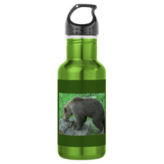 Brown Bear 18 oz Water Bottle