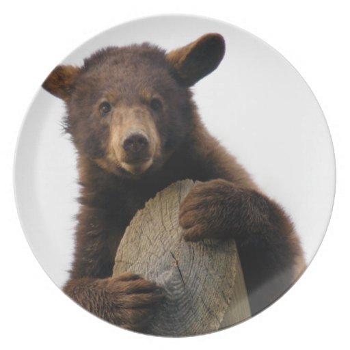 Brown Bear-6233e11x11 Platos De Comidas