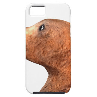 Brown Bear and Butterfly iPhone SE/5/5s Case