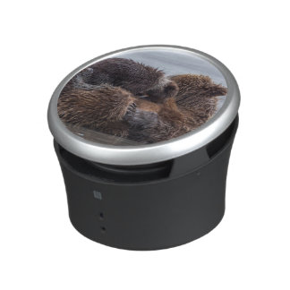 Brown bear and cubs 2 bluetooth speaker