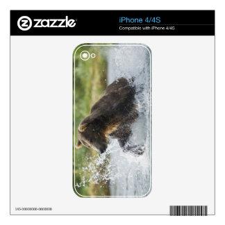 Brown Bear chasing salmon in river iPhone 4 Skin