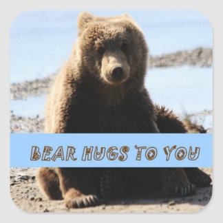 Brown Bear cub hugs to you sticker