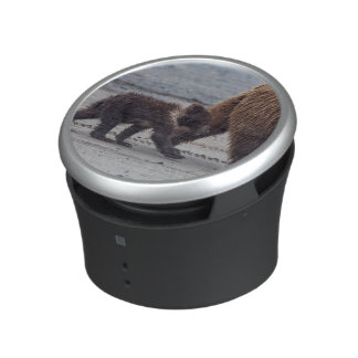 Brown Bear cub Speaker