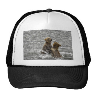 Brown bear cubs playing in water hat