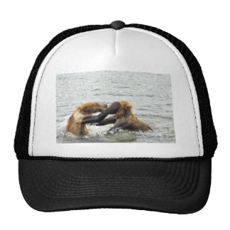 Brown bear cubs playing in water hats