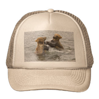 Brown Bear Cubs Playing in Water Trucker Hat