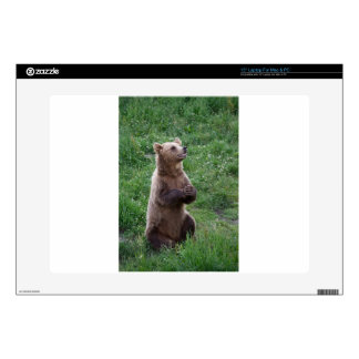 """Brown Bear Decal For 15"""" Laptop"""