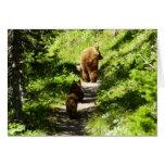 Brown Bear Family Card