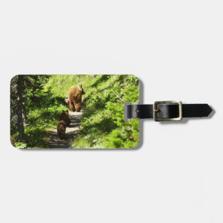 Brown Bear Family Luggage Tag