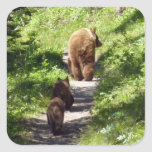Brown Bear Family Square Sticker